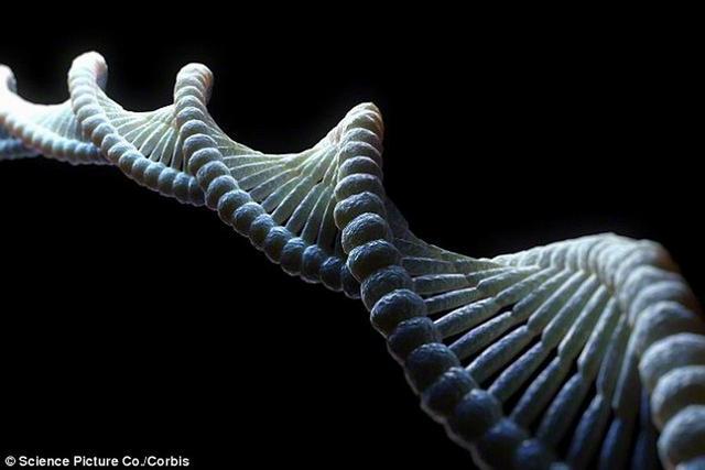 神秘DNA侵袭人类祖先 根源竟来自远古病毒